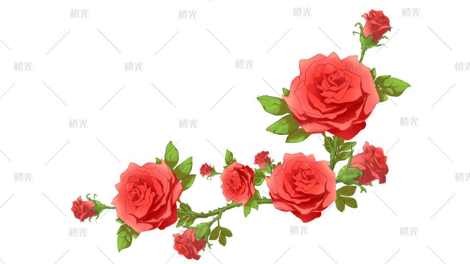 玫瑰系列详情 - 素材交易平台 - 橙光 66rpg